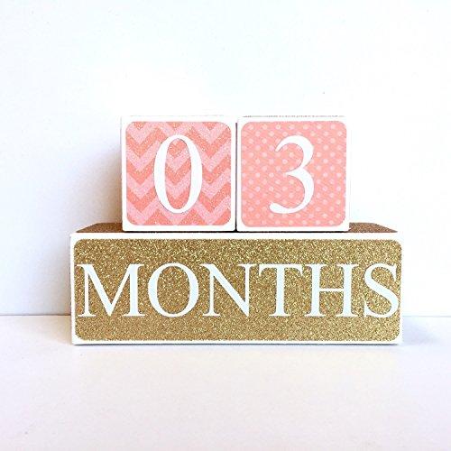 Coral and Gold Baby Age Blocks Milestone Blocks Photo Prop Countdown Blocks