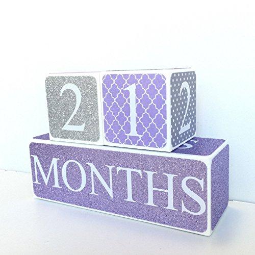 Purple and Gray - Baby Age Blocks Milestone Blocks Photo Prop Countdown Blocks