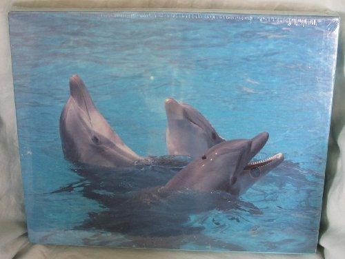 1993 Cape Shore  Dolphins  Jigsaw Puzzle - 550 pieces
