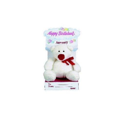 Ganz Bear Your Soul - January Birthday Teddy Bear Plush