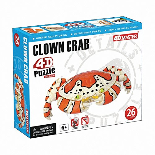 Tedcotoys Clown Crab Kids Educational Science Activity Kit by TEDCO - 4D MASTER