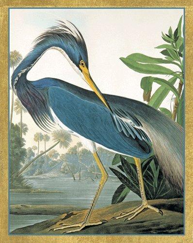 Bridge Tallies Score Cards for Bridge Games Audubon Birds Design