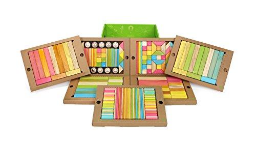 240P-Piece Tegu Classroom Magnetic Wooden Block Set Tints