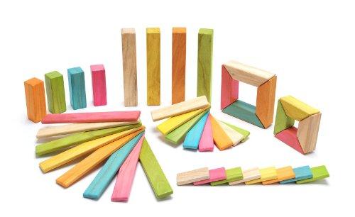 40 Piece Tegu Explorer Magnetic Wooden Block Set Tints