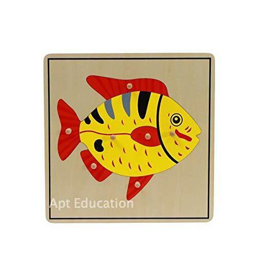 Apt Education Toy Montessori Zoology Puzzle Set1 Fish 1 Bird 1 Frog 1 Turtle1 Horse