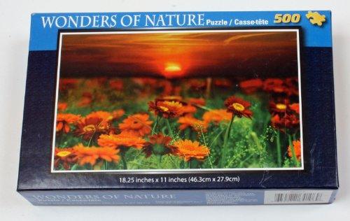 Wonders of Nature Puzzle 500 Piece Orange Flowers