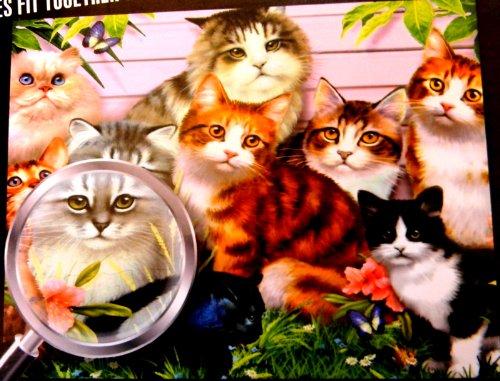 Flawless Finish 1000 Piece Puzzle Cats Kittens Kitties Howard Robinson