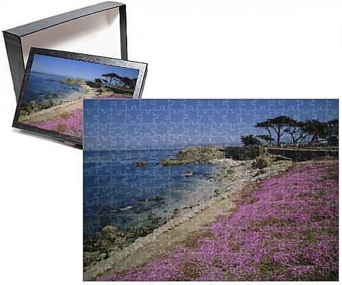 Photo Jigsaw Puzzle of Carpet of mesembryanthemum flowers