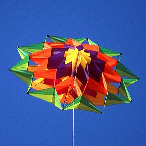 Lotus Single Line Box Kite by Pacific Quest
