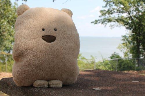 Baby teddy bear pillow gift