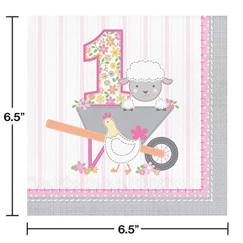 Farmhouse 1st Birthday Happy Birthday Girl Napkins 16 ct