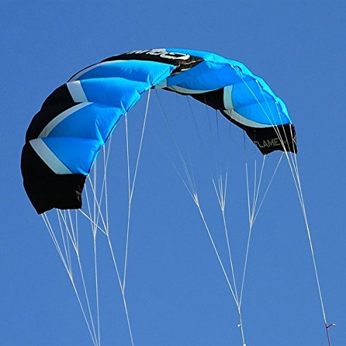 Qunlon Q2 4-Line Traction Stunt Kites Power Kites Sports Beach Kites