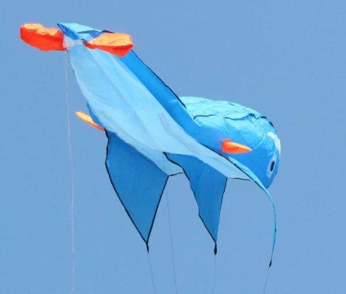 Sky Aquarium 2M 3D Large Whale Parafoil Kite Outdoor Park Beach Fun