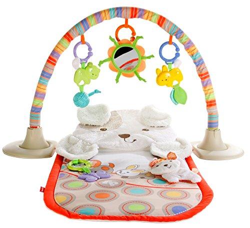 Fisher-Price Cuddle n Play Gym My Little Snugapuppy