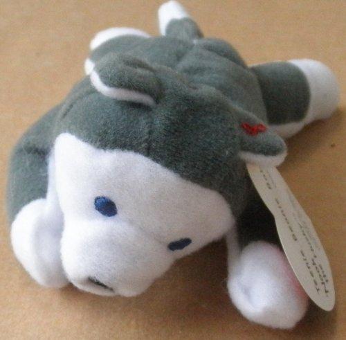 TY Teenie Beanie Babies Nook the Husky Stuffed Animal Plush Toy - 5 inches long - In original plastic bag