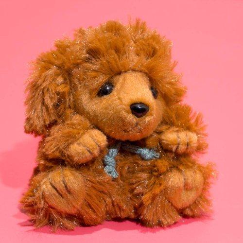 "Å"" beanbag Fontaine stuffed toy poodle brown 155207 TAKENOKO  bamboo shoot"