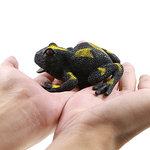Frog ToysRubber Frog Figures Gift Replica Toy 35inchDendrobatesGreat Safety Material TPR Super StretchyZoo World Realistic Frog Bathtub Reptile toys