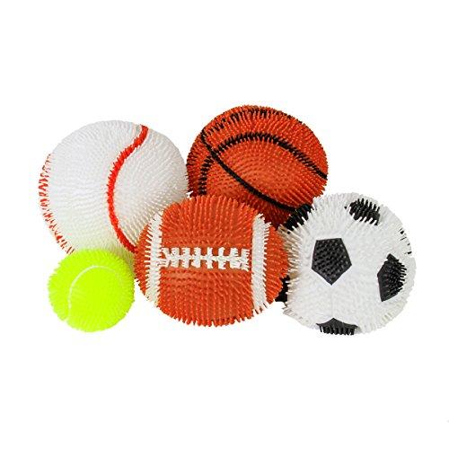 Sports Balls 5 Set