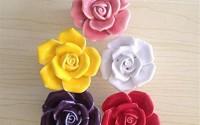 SunKni-41mm-5Pcs-Rose-Flower-Floral-Knobs-Ceramic-Drawer-Handles-Pulls-for-Wardrobe-Cupboard-Dresser-Cabinet-Closet-Kitchen-Furniture-with-Free-Screws-2016-New-Sets-Pack-of-5-Different-Colors-7.jpg