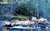 1000pc-Scenic-Falls-Guild-Puzzle-1.jpg